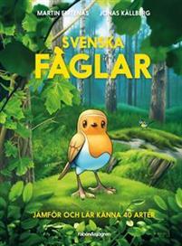 svenska-faglar-jamfor-och-lar-kanna-40-arter